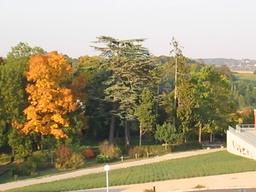 Vue de l'arboretum
