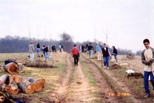 (1 arbre 1 élève dans l'allée verte en 2004)