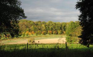 (vue du parc de Grignon)