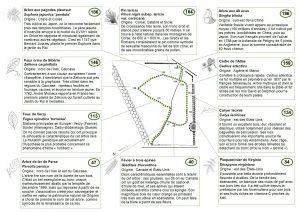 (plan du sentier de découverte dans l'arboretum de Grignon)